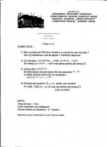 Subiecte_Gheorghe Cenuse_anul 2013_clasa 5